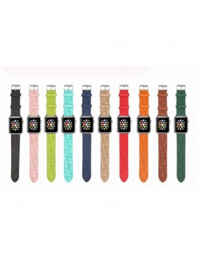 Dior Apple Watch Band Strap Colorful